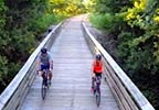 Tanglefoot Trail® - Houston Trailhead