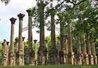 Windsor Ruins on the Natchez Trace Parkway