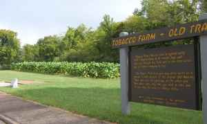 Tobacco Farm and Old Trace Drive - Natchez Trace Parkway