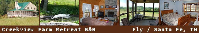 Creekview Farm Retreat Bed and Breakfast - Fly / Santa Fee, Tennessee