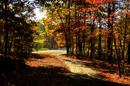 Freedom Hills Overlook - Natchez Trace Fall Foliage