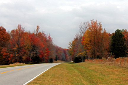 Milepost 371 - Natchez Trace Fall Foliage