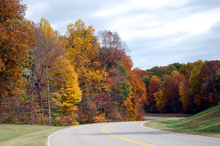 Milepost 421 - Natchez Trace Fall Foliage