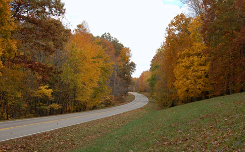 Milepost 398 - Natchez Trace Fall Foliage