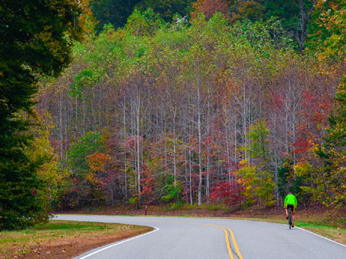 Milepost 431 - Natchez Trace Fall Foliage