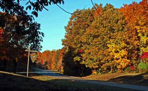 Sheboss Place - Natchez Trace Fall Foliage