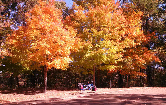 Jeff Busby Park and our Tandem Bike - Mississippi Fall Foliage