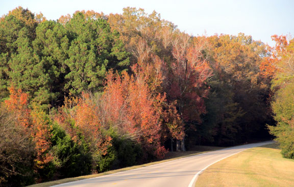 Milepost 260 - Mississippi Fall Foliage