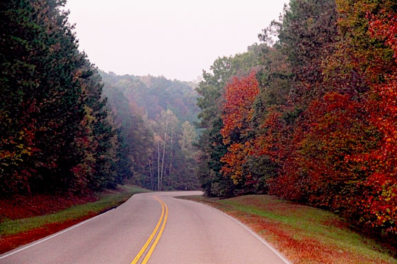 Milepost 289 - Mississippi Fall Foliage