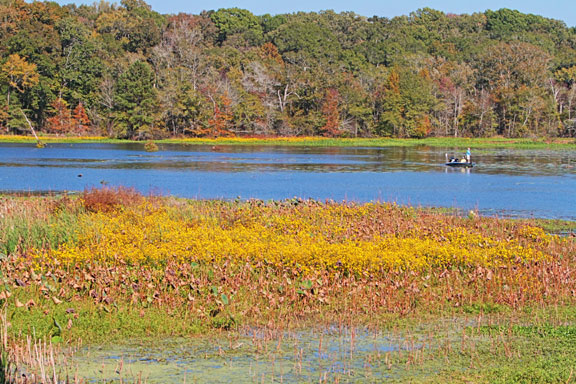 River Bend - Mississippi Fall Foliage