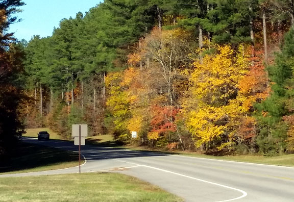 Tennessee Hwy 7 Exit - Tennessee Fall Foliage