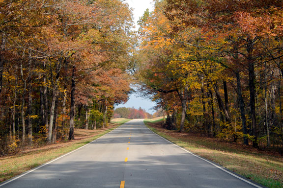Milepost 371 - Tennessee Fall Foliage