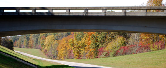 Milepost 419 - Tennessee Fall Foliage