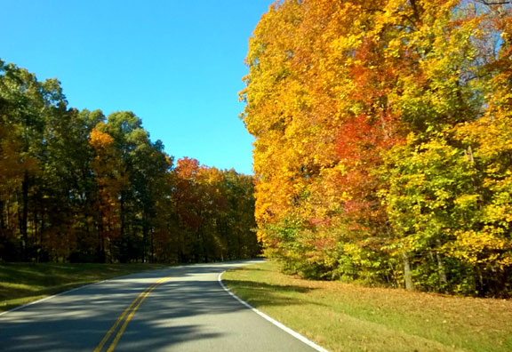 Milepost 420 - Tennessee Fall Foliage