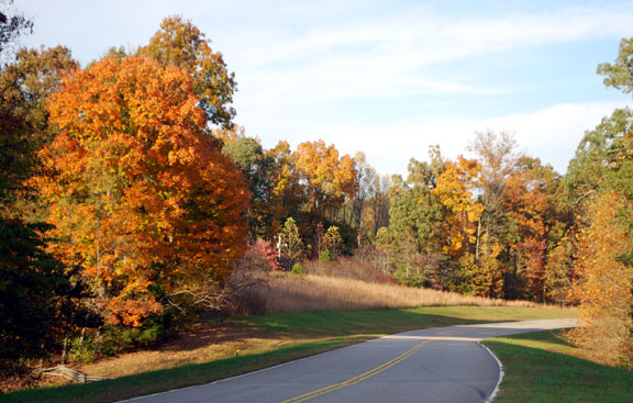 Milepost 434 - Tennessee Fall Foliage