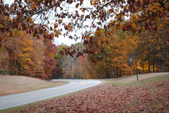 Sheboss Place - Tennessee Fall Foliage
