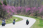 Scenery is awesome on the Natchez Trace Parkway.