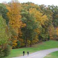 Natchez Trace Parkway: Nashville - Franklin | Cyclists enjoying a fall day near milepost 440.