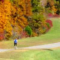 Natchez Trace Parkway: Nashville - Franklin | Fall foliage