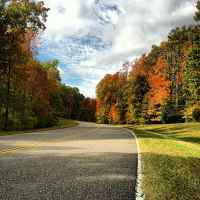 Natchez Trace Parkway: Nashville - Franklin | Fall foliage near milepost 431.