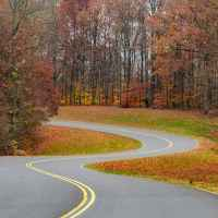 Natchez Trace Parkway: Nashville - Franklin | Photo at the road bend near milepost 432.