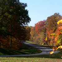 Natchez Trace Parkway: Nashville - Franklin | Fall foliage near milepost 441.