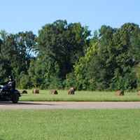 Mississippi - Motorcyles passing by the Bear Creek Mound site.
