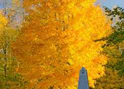 Fall foliage at the War of 1812 Memorial.