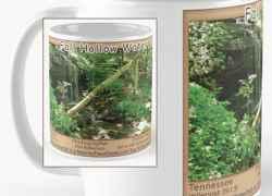 Fall Hollow Waterfall Coffee Mugs