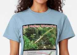 Fall Hollow Waterfall T-Shirts