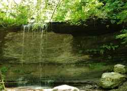Early June at Fall Hollow Waterfall