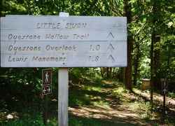 Dyestone Hollow Trail - Meriwether Lewis Death & Burial Site