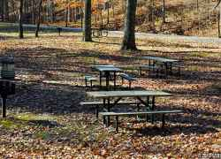 Picnic area at Meriwether Lewis Death and Burial Site.