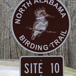 North Alabama Birding Trail