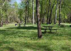 The picnic area is next to Bear Creek.