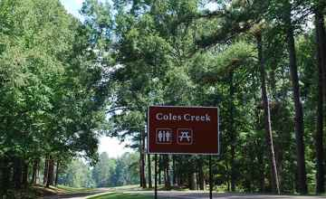 Natchez Trace Parkway at Coles Creek