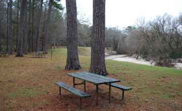 View of Coles Creek from one of the picnic tables.