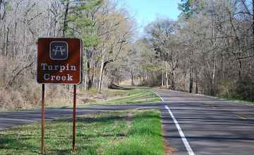 The Natchez Trace Parkway at Turpin Creek.