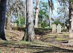 Amid giant moss covered oaks, lies the Grand Gulf Cemetery.