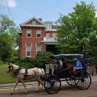 Horse & Carriage Ride passing in front of Maple Terrace Inn