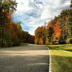Fall foliage near milepost 431.