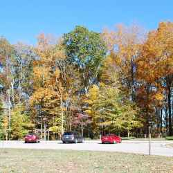 Parking area and trailhead area at Timberland Park.