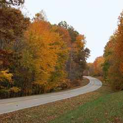 Peak fall foliage near Milepost 398.
