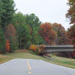 Fall foliage view of an overpass near milepost 410.