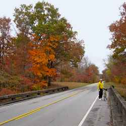 Cyclist taking a break to view the Natchez Trace's fall foliage.