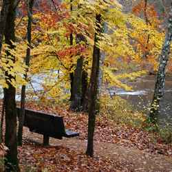 Enjoy fall foliage at Metal Ford from this bench.
