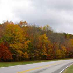 Fall foliage picture was taken a little bit north of Collinwood, TN near milepost 358.