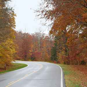 Waynesboro - Collinwood area: Fall foliage at milepost 363.