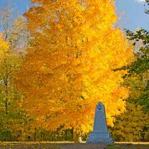 Leiper's Fork - Fly area: Fall foliage at the War of 1812 Memorial.