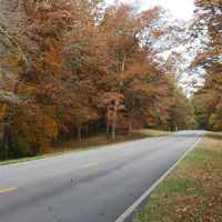 Fall foliage at milepost 337.